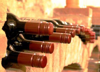 filiera vitivinicola