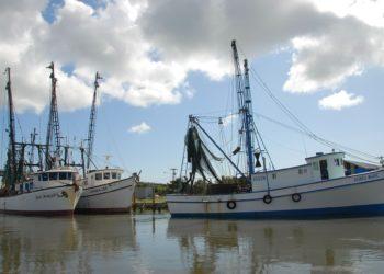 settore nautico