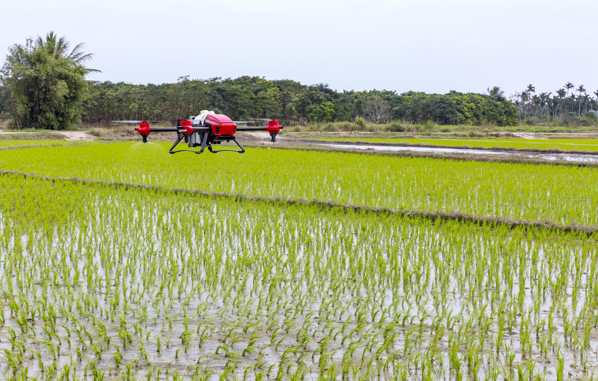 innovazione rurale