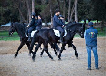 diversamente-abili-cavalli-michele-caroli-progetto-corral