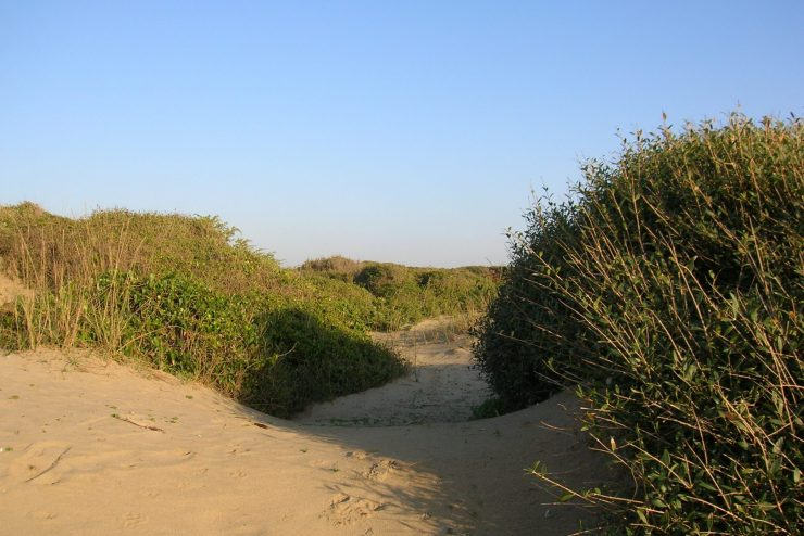 riserva naturale