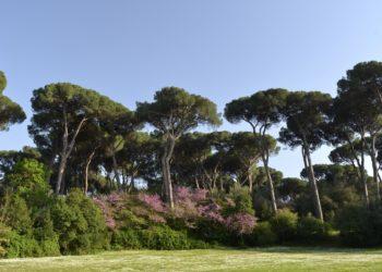 parchi Lazio