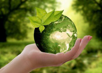 sostenibilità imprese