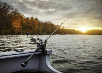 bando pesca