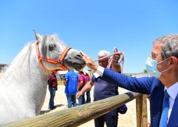 Musumeci - Fiera Cavallo