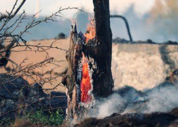 incendi Oristano